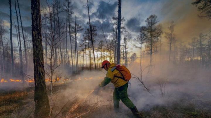 Россия, в ЕС видят пожары и наводнения в Сибири, мы русскоязычные ЕС сожалеем